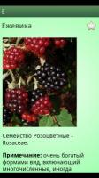 Скриншот Справочник лекарственных трав