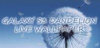 Скриншот  Galaxy S3 Dandelion