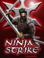 Скриншот Ninja strike