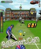 Скриншот Flintoffs Powerplay Cricket