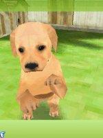 Скриншот 3D Dogz