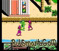 Скриншот Teenage_Mutant_Ninja_Turtles_III