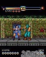 Скриншот Ninja Inferno