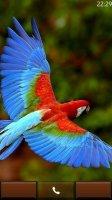 Скриншот Parrot HD