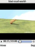 kiwi-mad-world
