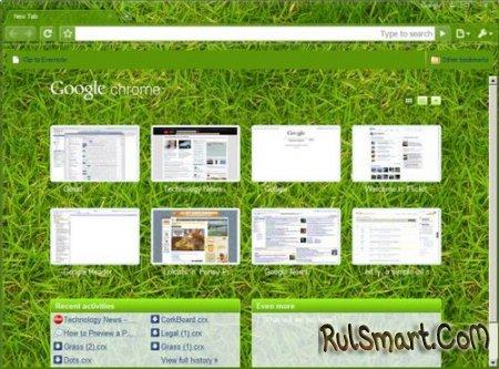 Google Chrome обзавелся скинами