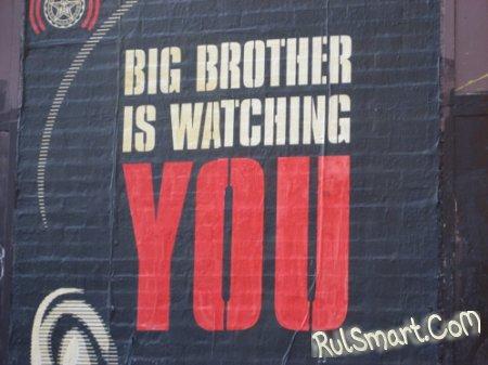 Большой Palm наблюдает за тобой