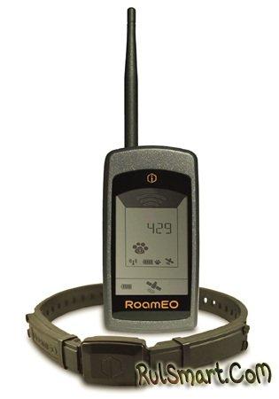 GPS-трекер RoamEO Pup – рекомендации лучших собаководов