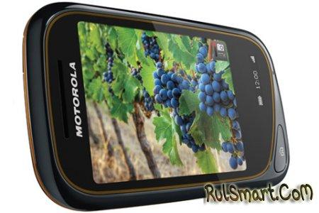 Motorola Wilder - телефон для активных людей