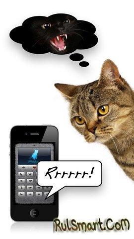 скачать кошачий переводчик на компьютер