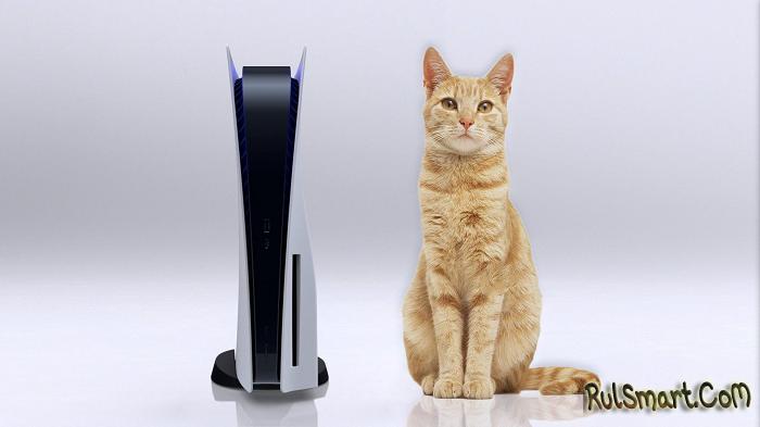 PlayStation 5: геймеры получают кошачий корм вместо игровой консоли